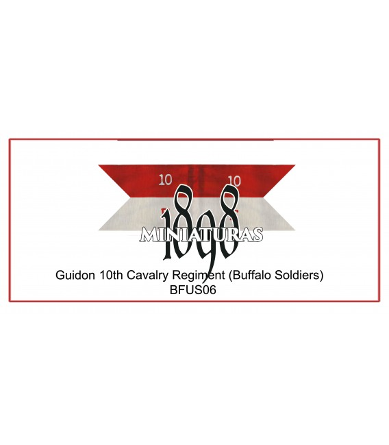 Company Guidon, 10th Cavalry (Buffalo soldiers)