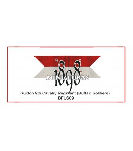 Company Guidon, 9th US Cavalry (Buffalo soldiers)