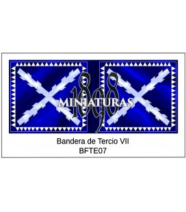 Bandera de Tercio VII