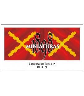 Bandera de Tercio IX